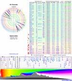 Signal analysis tool